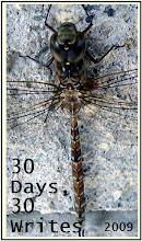 30 Days, 30 Writes 2009