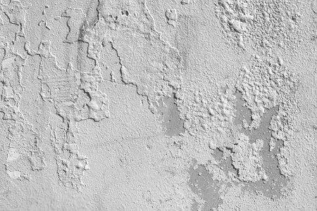 Problemas de humedad en paredes - Humedad en pared ...