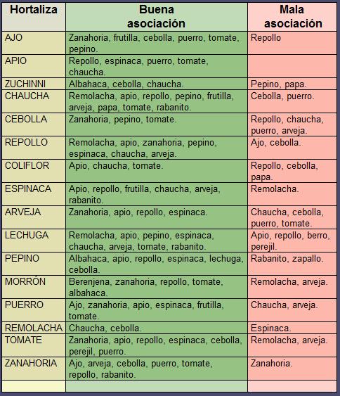 la huerta rotaci n y asociaci n de cultivos agrostart