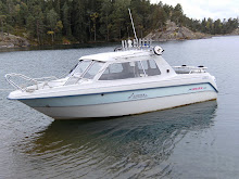 Stora båten