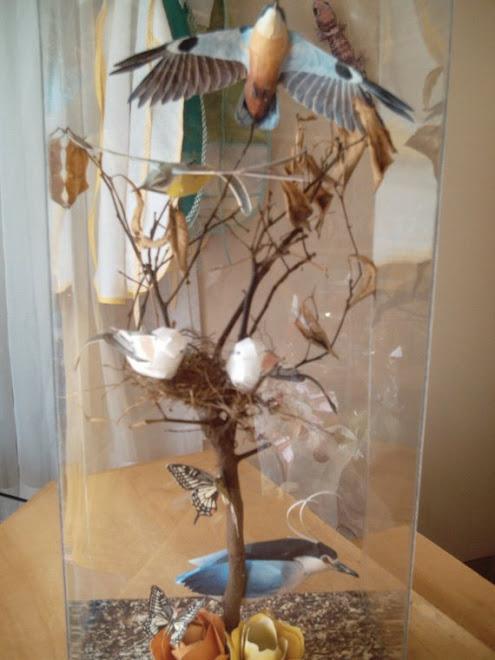 Pássaros-2