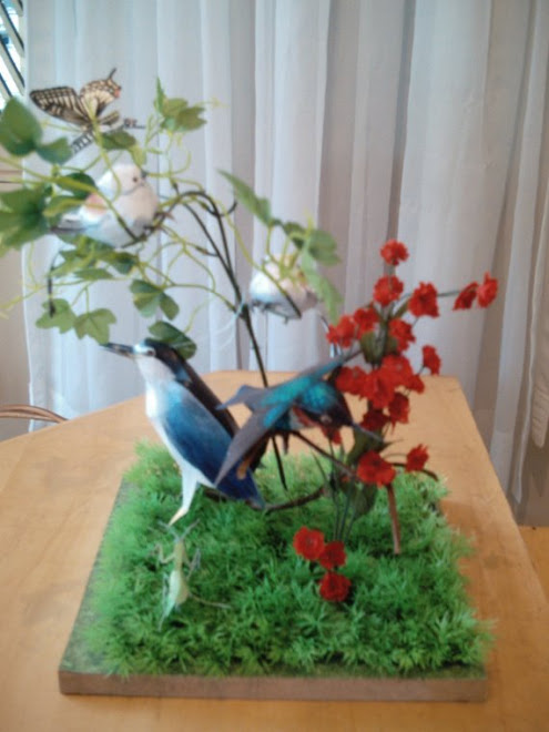 Pássaros-1
