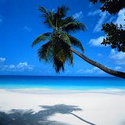 Las playas de México son los lugares turísticos más socorridos en el país. playa