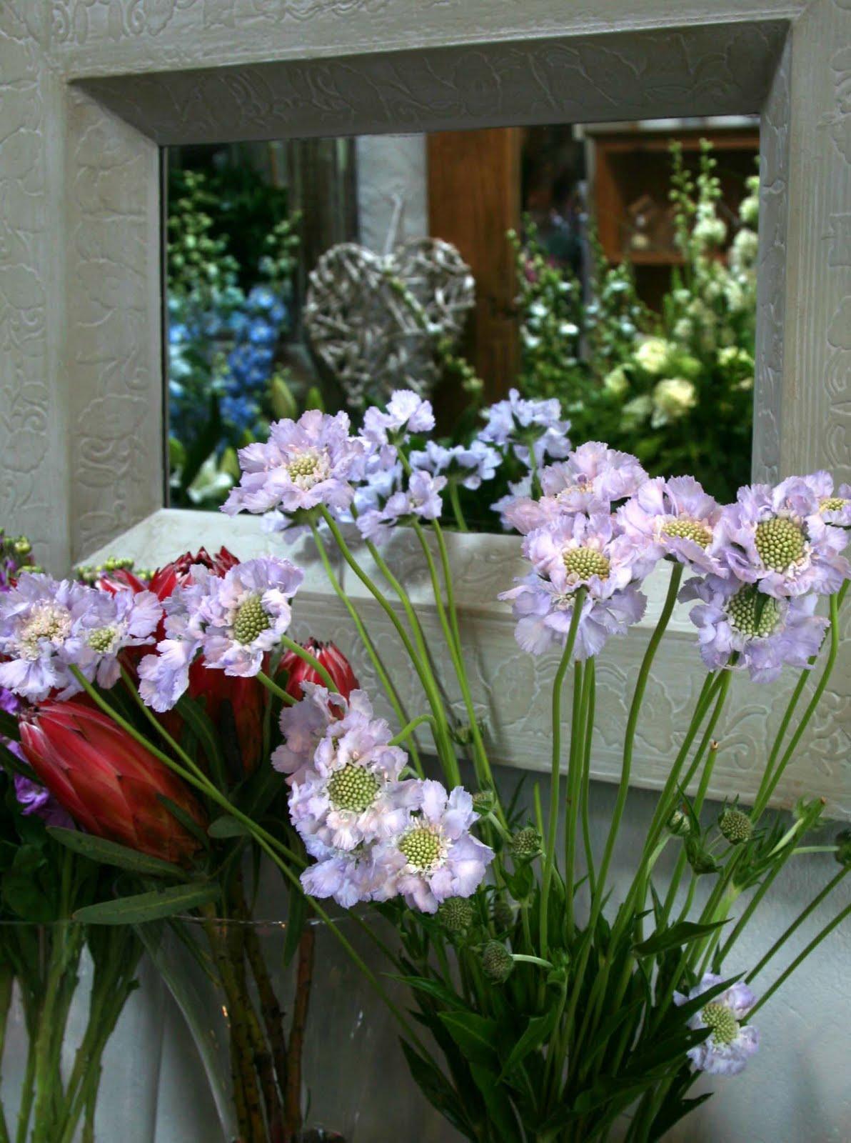 The Garden Room Florist Taunton