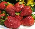 Khasiat Buah Strawberry