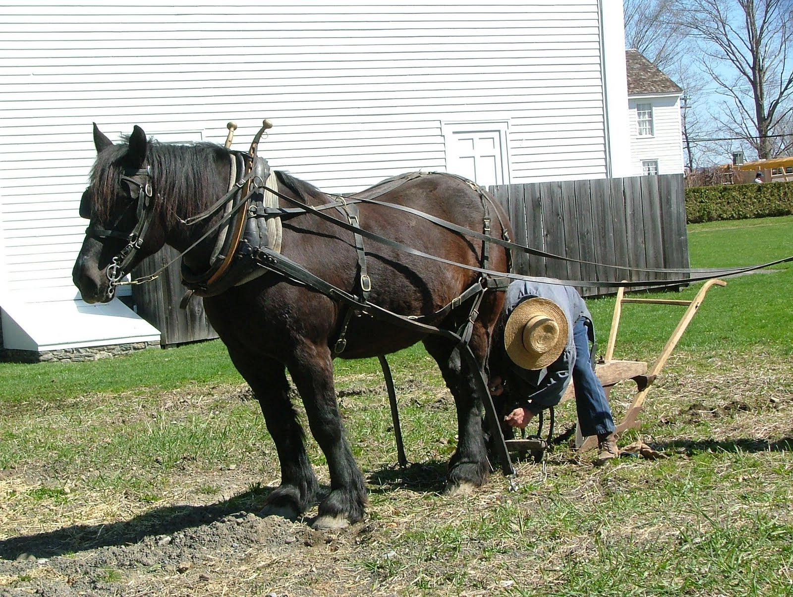 Horse Drawn Turning Plow http://ruralblacksmith.blogspot.com/2010/04/fresh-tilled-soil-using-1830s-horse.html