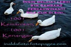 InaldaFoto Fotopages