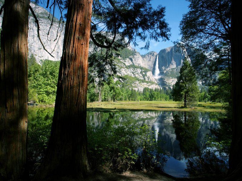 paisajes hermosos de la naturaleza. la fauna y la naturaleza,
