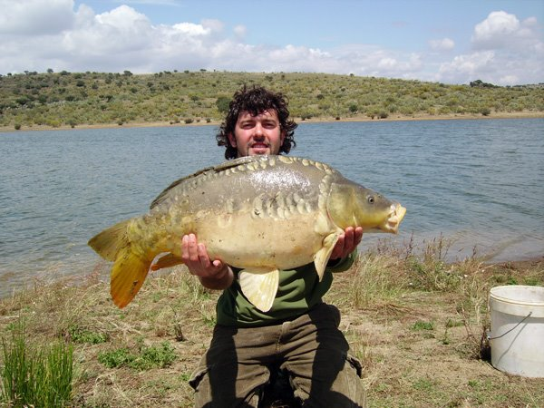 Pesca y ocio for Carpa europea