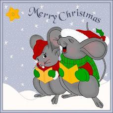 Casal Ratinhos