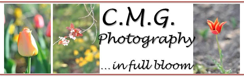 CMG Photography