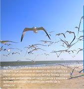 Asociación ALAS -HOGAR Y FAMILIA