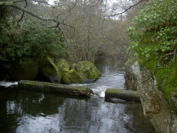 Caudal do Rio Seia