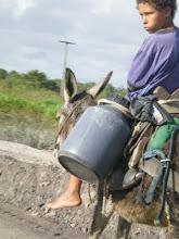 em algum lugar nas estradas da Bahia