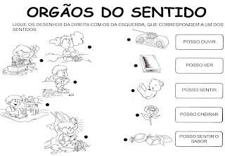 gh Atividades 5 Sentidos   Ciências Naturais