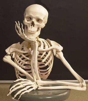 nuestro soporte es nuestro esqueleto