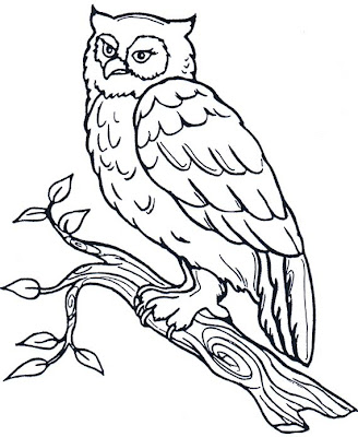 Dibujo del búho para colorear o pintar