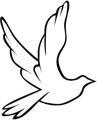 Dibujo fácil de una paloma para colorear
