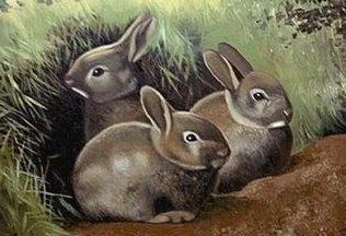 Pintura de conejos