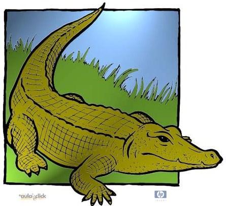 Caricaturas con cocodrilos - Imagui