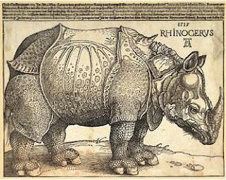 Gráfico de un rinoceronte
