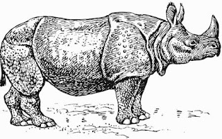 Ilustración de un rinoceronte de perfil