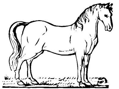Dibujo de un caballo para colorear o pintar