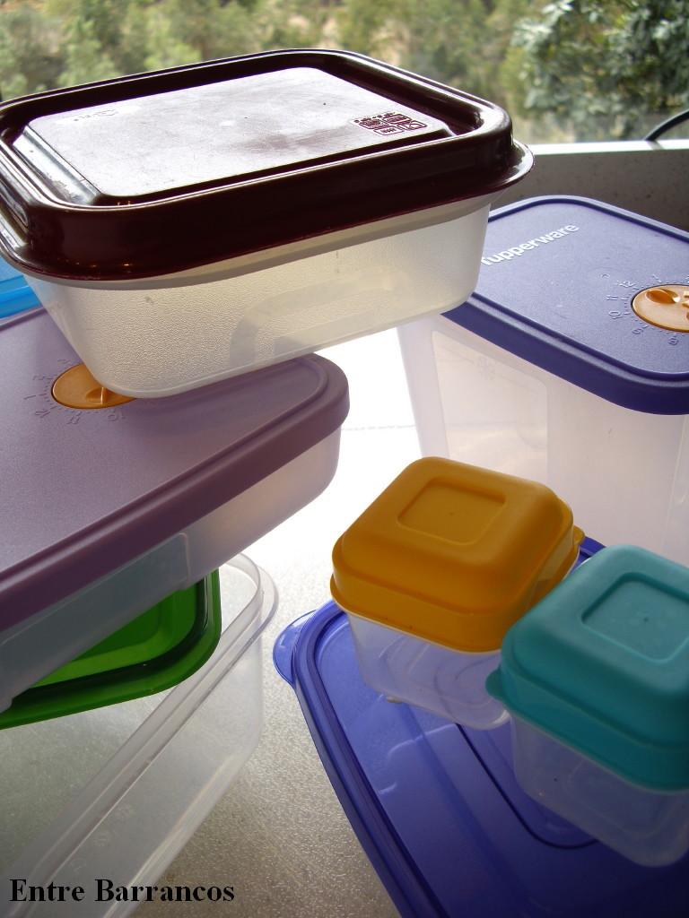 Entre barrancos cocina congelaci n sexta parte el envasado - Se pueden congelar las almejas crudas ...