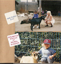 Goats in my Animal Kingdom Photo Album