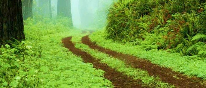Only One Road leads to eternal life...