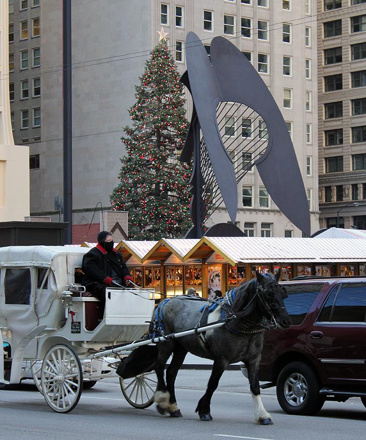 Daley Plaza, Chicago, Christmas, 2010
