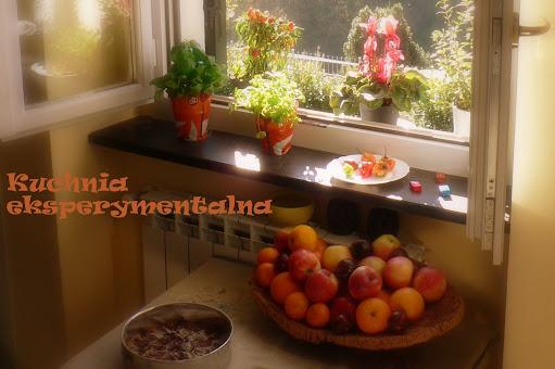 Kuchnia eksperymentalna