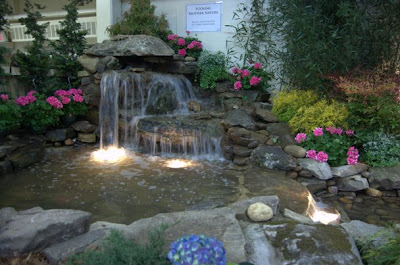 From The Nashville Lawn And Garden Show Pictures Of An