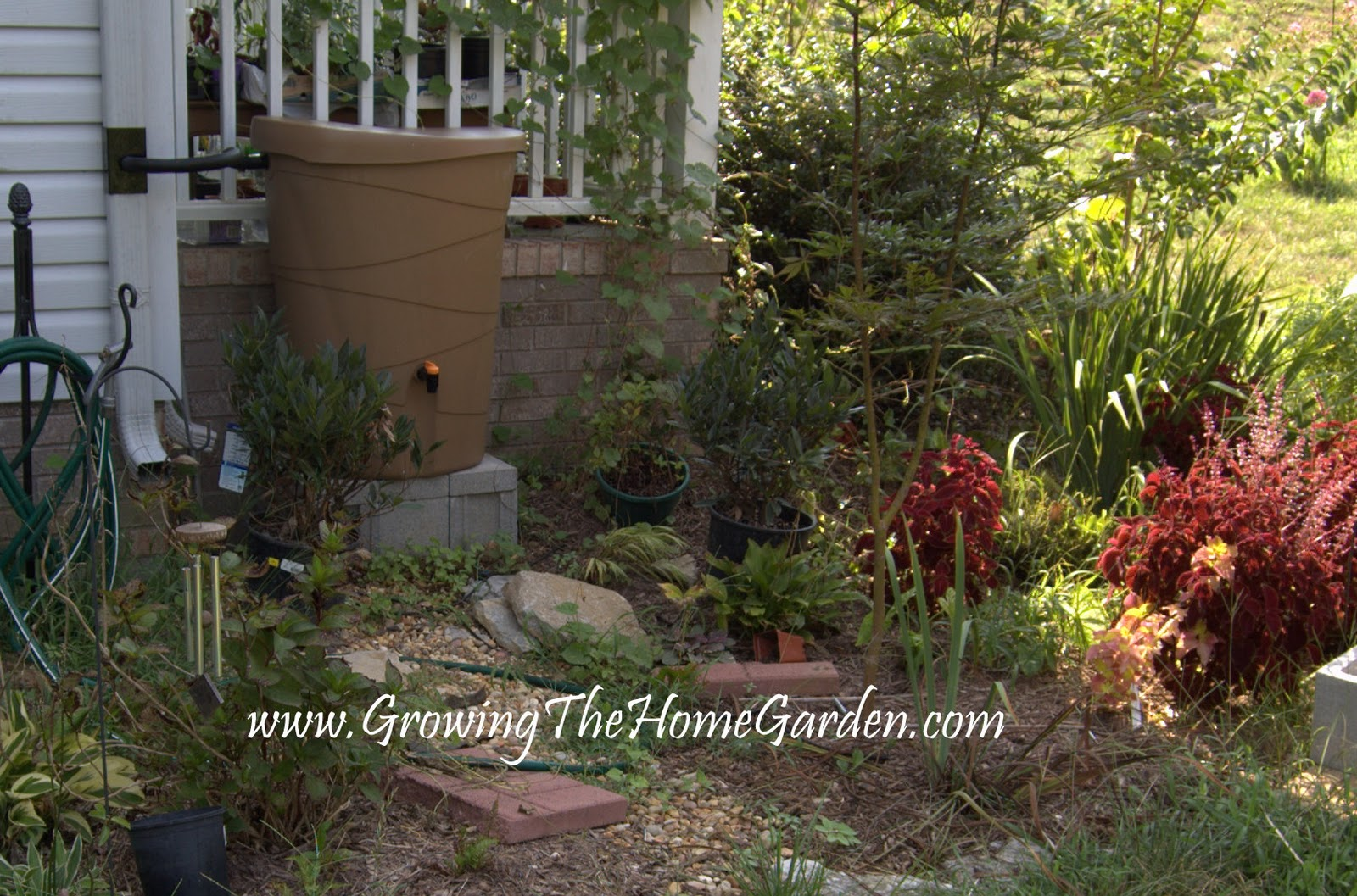 A Review of My Rain Barrel - Growing The Home Garden