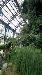Les Jardins des Plantes