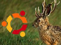 Aggiornamenti di Sicurezza importanti per Ubuntu 9.04 Jaunty Jackalope, terza parte