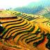 Vietnam part 3