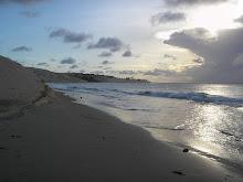 Gosto de ver o mar. Gosto da cor que brota das suas águas;