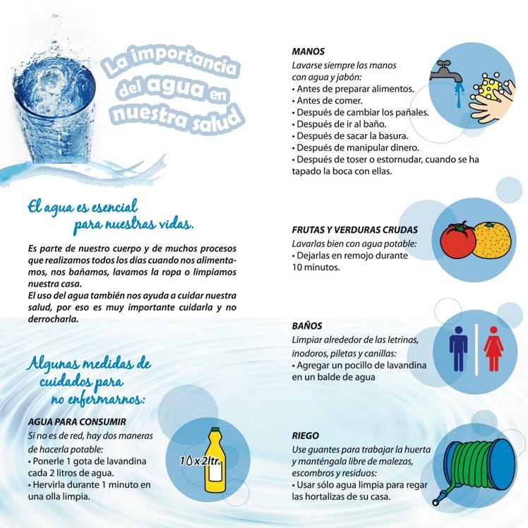 La importancia del agua en nuestra salud | Salud | Pinterest | Salud
