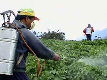 Απόφαση για όρια καταλοίπων φυτοφαρμάκων