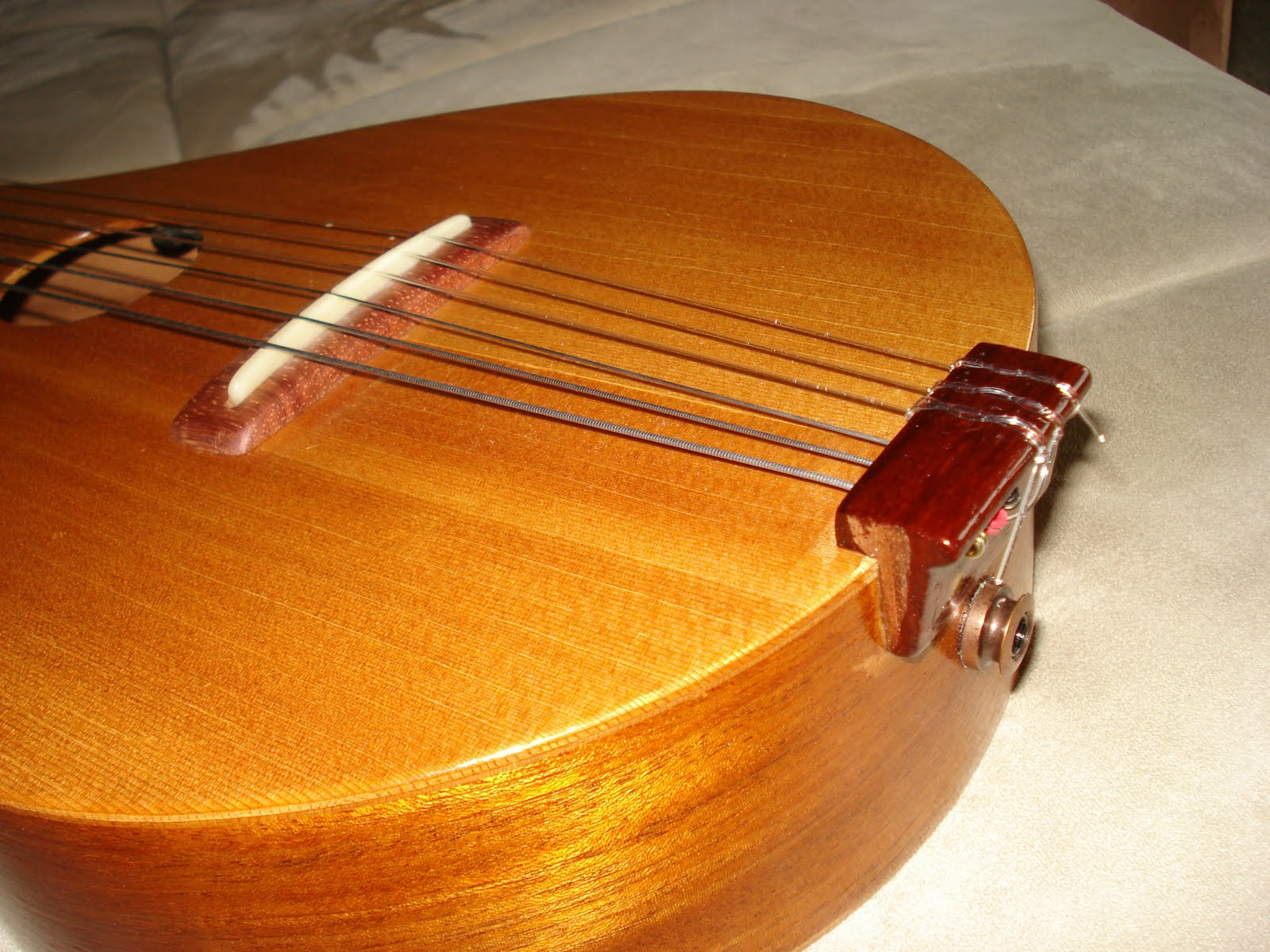 Feb 2010 nylon strings i