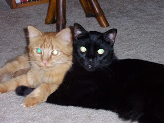 Sam and Max