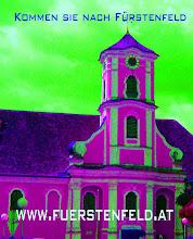 Besuchen sie Fürstenfeld