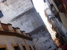La Guadalupana también emigra