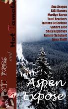 Aspen Expose'