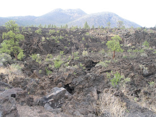 The weird igneous landscape of the Sunset Crater Volcano area.