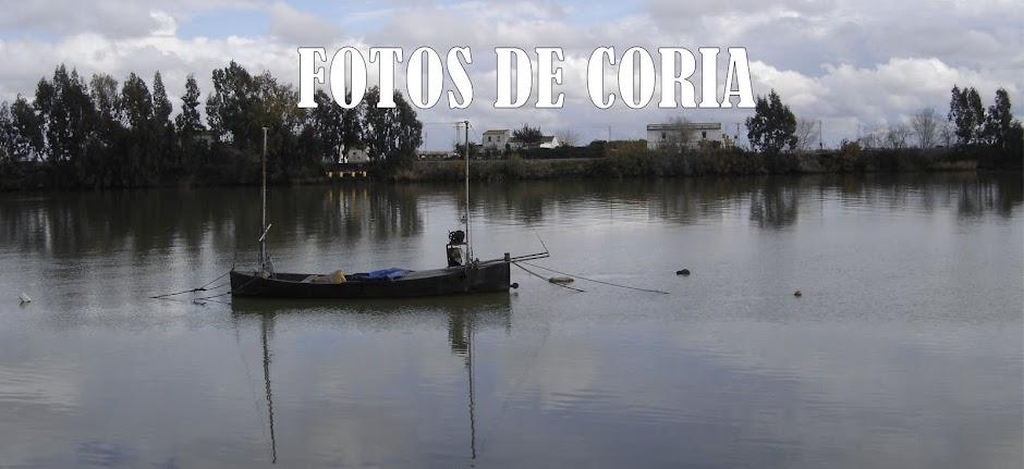 FOTOS DE CORIA DEL RÍO