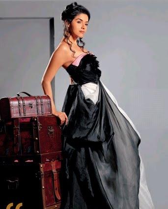 wallpapers,asin gallery, actress asin hot stills, asin new photos
