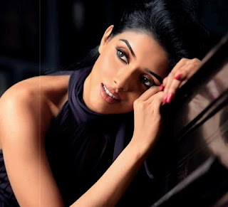Actress Asin hot in new photoshoot