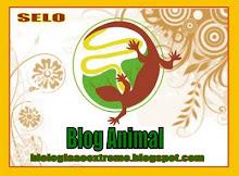 Segunda premiação ao Animals Net